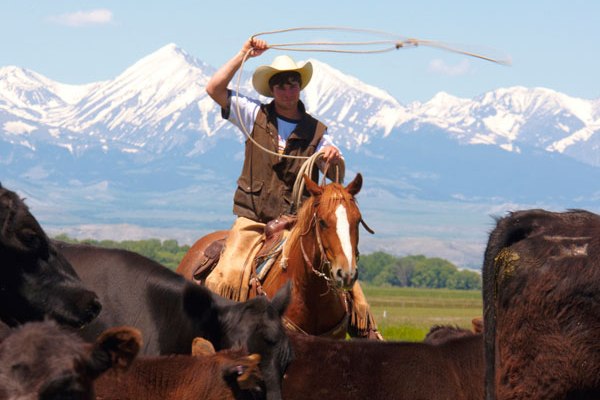 Montana Ranch Vacations | Ranches | Where to Stay